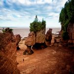 Best Group Activities in New Brunswick